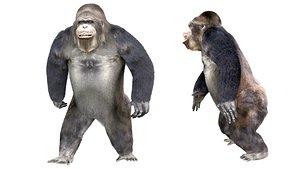 3D Gorilla Animated blender