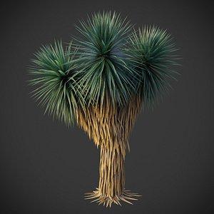 XfrogPlants Blue Yucca - Yucca Rigida 3D model