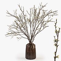 Branches in a vase 015