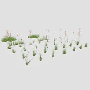 3D Low Poly Bent Grass
