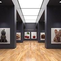 Art Gallery 012