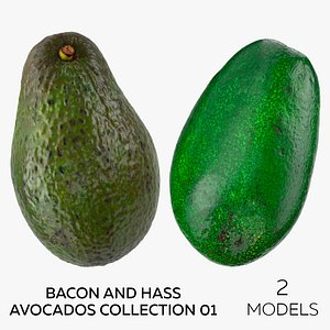 3D model Bacon and Hass Avocados Collection 01- 2 models