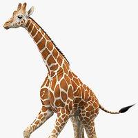 Giraffe Animated