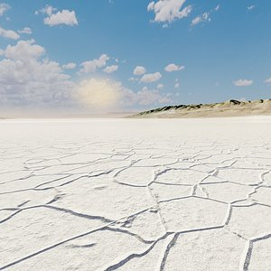 3D model desert sal lake