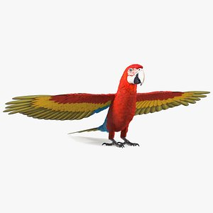 Red and Green Macaw Parrot Rigged 3D model