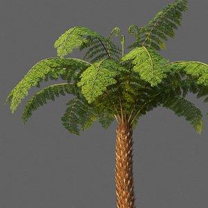3D XfrogPlants Soft Tree Fern - Dicksonia Antarctica