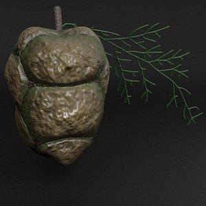 cypress cone 3D