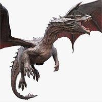Dragon Adult Rigged