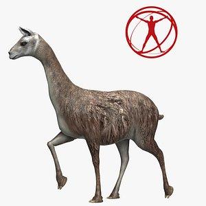 3D Llama Poser