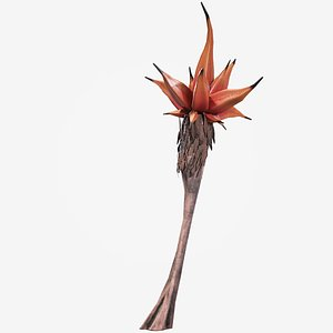 palm alien vegetation model