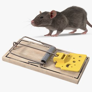 3D Rigged Rat with Trigger Trap Collection model