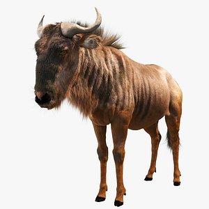 wildebeest model