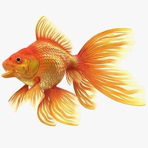 Orange Fancy Fantail Goldfish Rigged 3D model