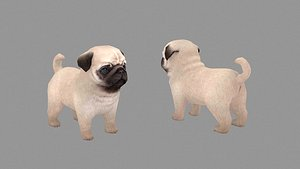 Cartoon pet puppy - Paco - baby dog 3D