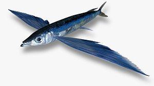 3D Sharpchin Flyingfish