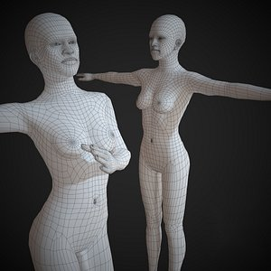 base mesh basemesh 3D model