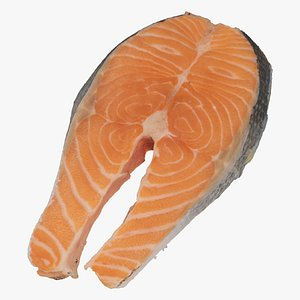 raw salmon steak 01 model