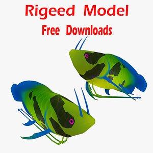 Salmon trout 3D model