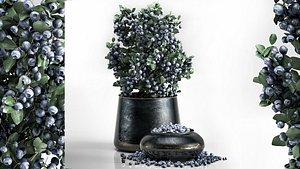 blueberry tree pots bowl 3D model