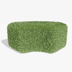3D Buxus Hedge 02