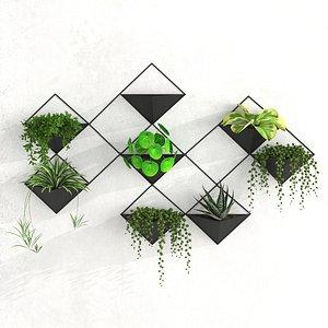 Houseplant 62 3D
