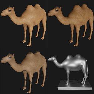 3D model camel statue