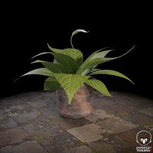 3D model plant nature