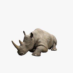 3D model Sleeping Rhino