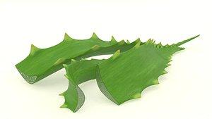 aloe plant vera 3D
