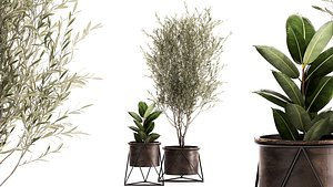 3D Houseplants in a rusty flowerpot for the interior 976