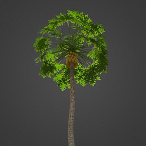 3D model 2021 PBR Papaya Collection - Carica Papaya