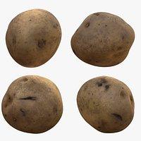 PhotoScan Potato