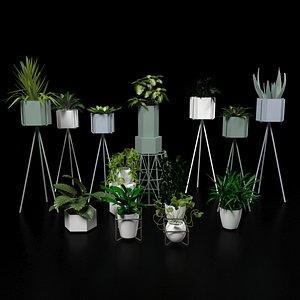 3D plant nature