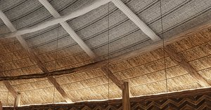 thatched roof 3D