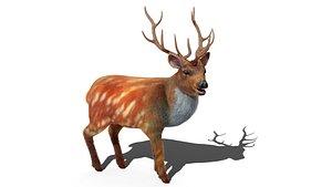 3D model Fur Rigged Deer Stag