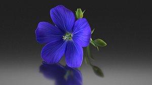 linum flower flax plant 3D model