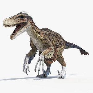 3D utahraptor feather model