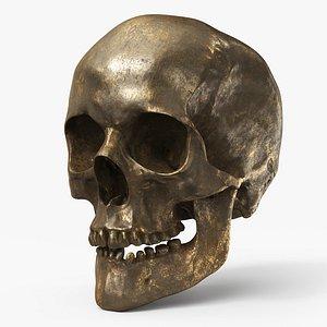 3D Human Skull  Old Gold - PBR