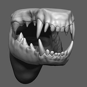 3D Dog Mouth ZBrush Sculpt model