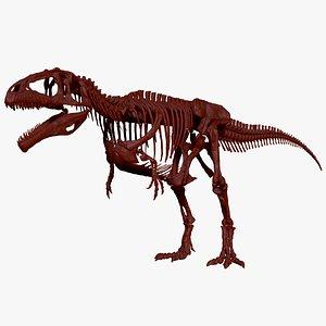 giganotosaururs skeletons project 3D