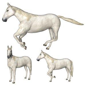3D model White horse