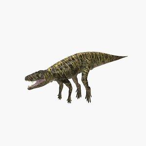 Batrachotomus model