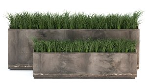Ornamental grass in a rusty flower pot for the interior 939 3D model