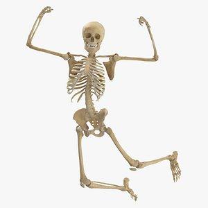 3D model Real Human Female Skeleton Pose 81