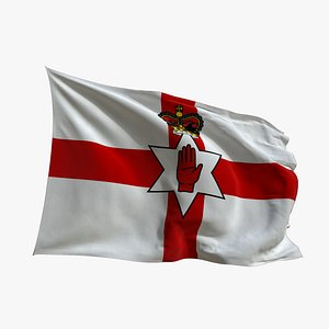 Realistic Animated Flag - Microtexture Rigged - Put your own texture - Def Northern Irleand 3D model
