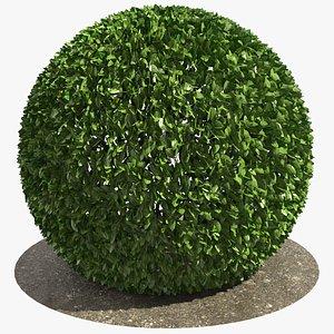 Round Bush 01 3D model
