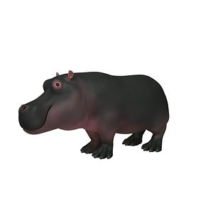 3D Hippopotamus Cartoon