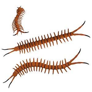 3D Rigged Centipede model