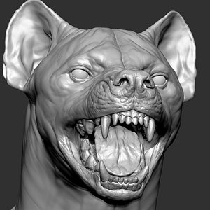 Hyena  with Facial Expressions 3D