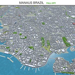 3D Manaus Brazil model